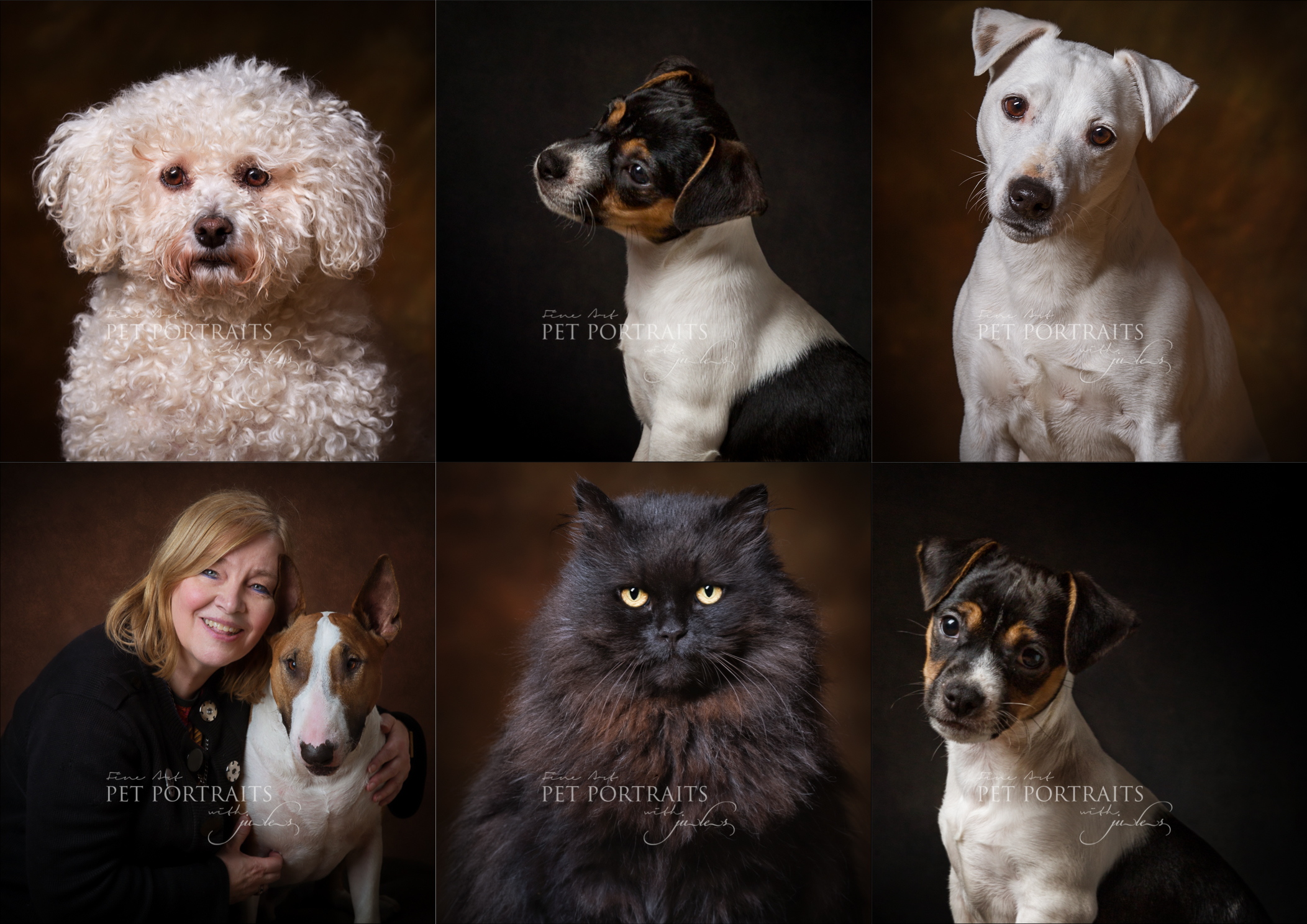 Leicester Pet Photographer_julesphotography_petportraits01